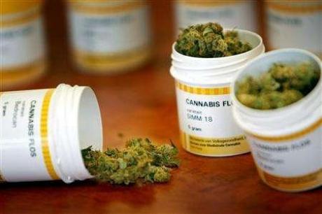 Cannabis in farmacia