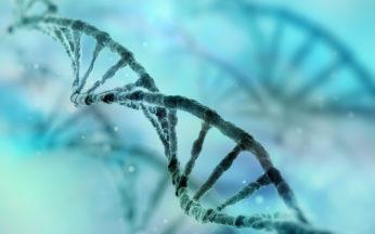 editing del genoma