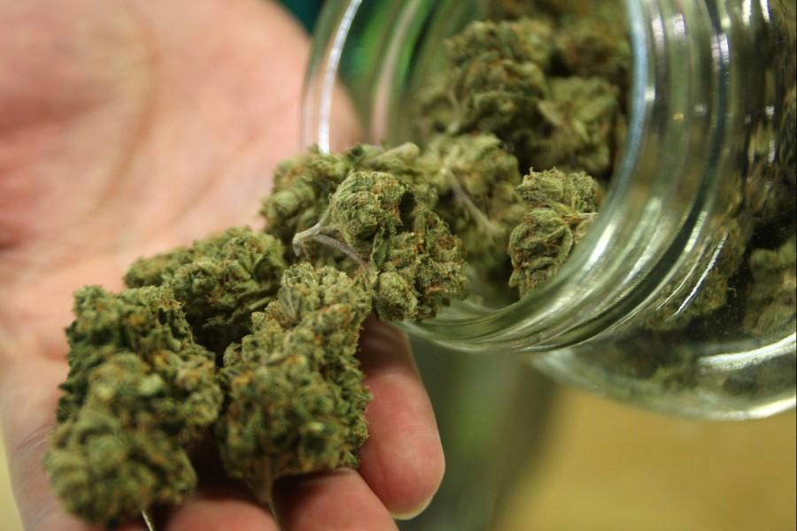 medizinisches-cannabis_0